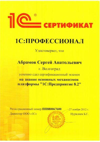1С:Профессионал по платформе 1С. Абрамов Сергей